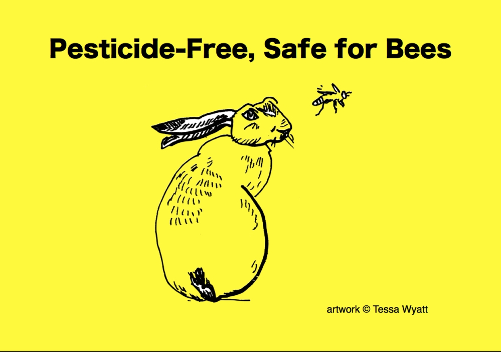 Pesticide Free Safe for Bees