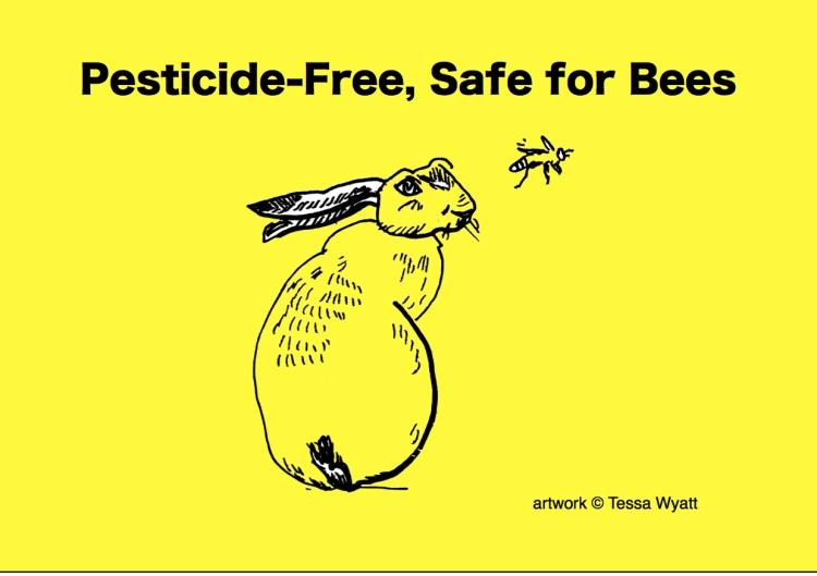 Pesticide Free Safe for Bees